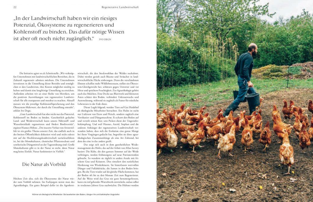 Werde Magazin: Reportage Biohof Gut Haidehof – Text Lesley Sevriens-5